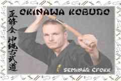 Okinawa-Karate-1