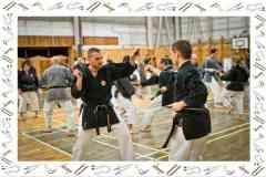 Okinawa-Karate-2