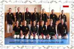Okinawa-Karate-4