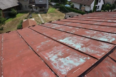 strecha (4)
